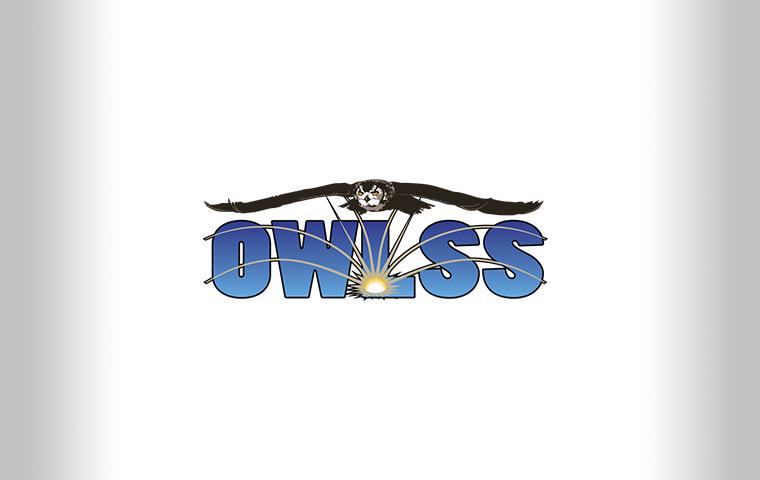 Torch OWLSS